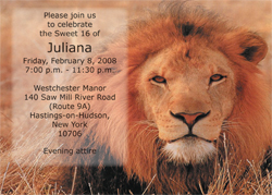 Lion Animal Theme Invitation