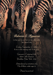 Zebras Animal Theme Invitation