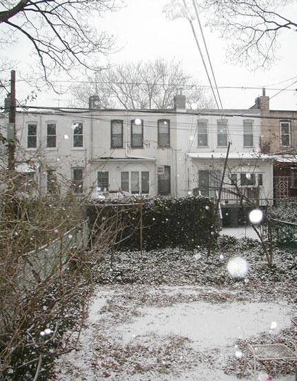 Beginning of the Snow