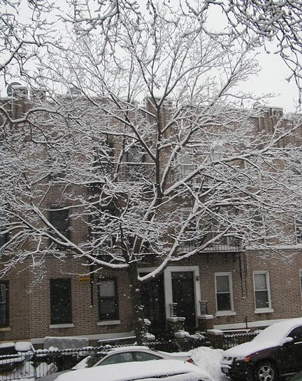 Bay Ridge Street in Snow