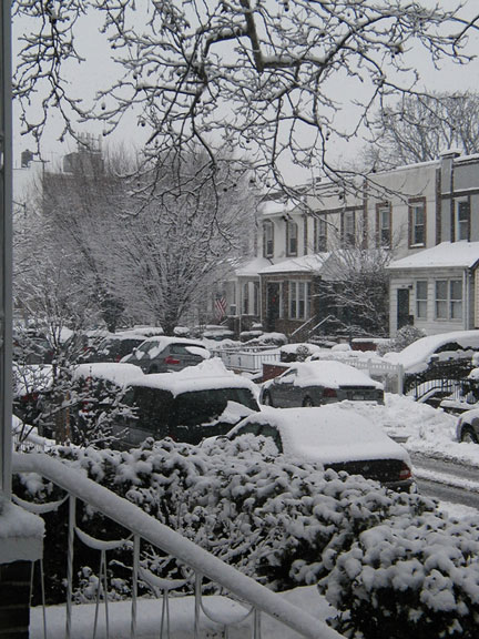 Bay Ridge Street in Snow 2