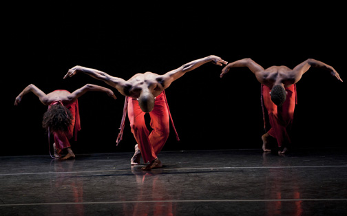 Dance Brazil - A Jornada
